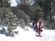 Winter at Wrightwood