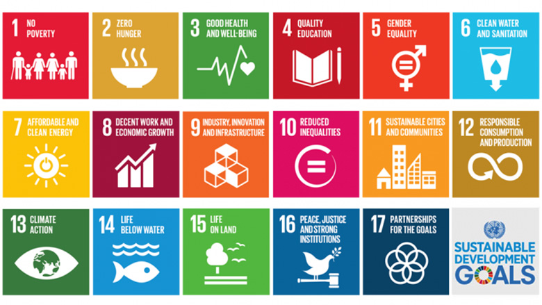 UN Global Goals SDG Womensphere.jpg