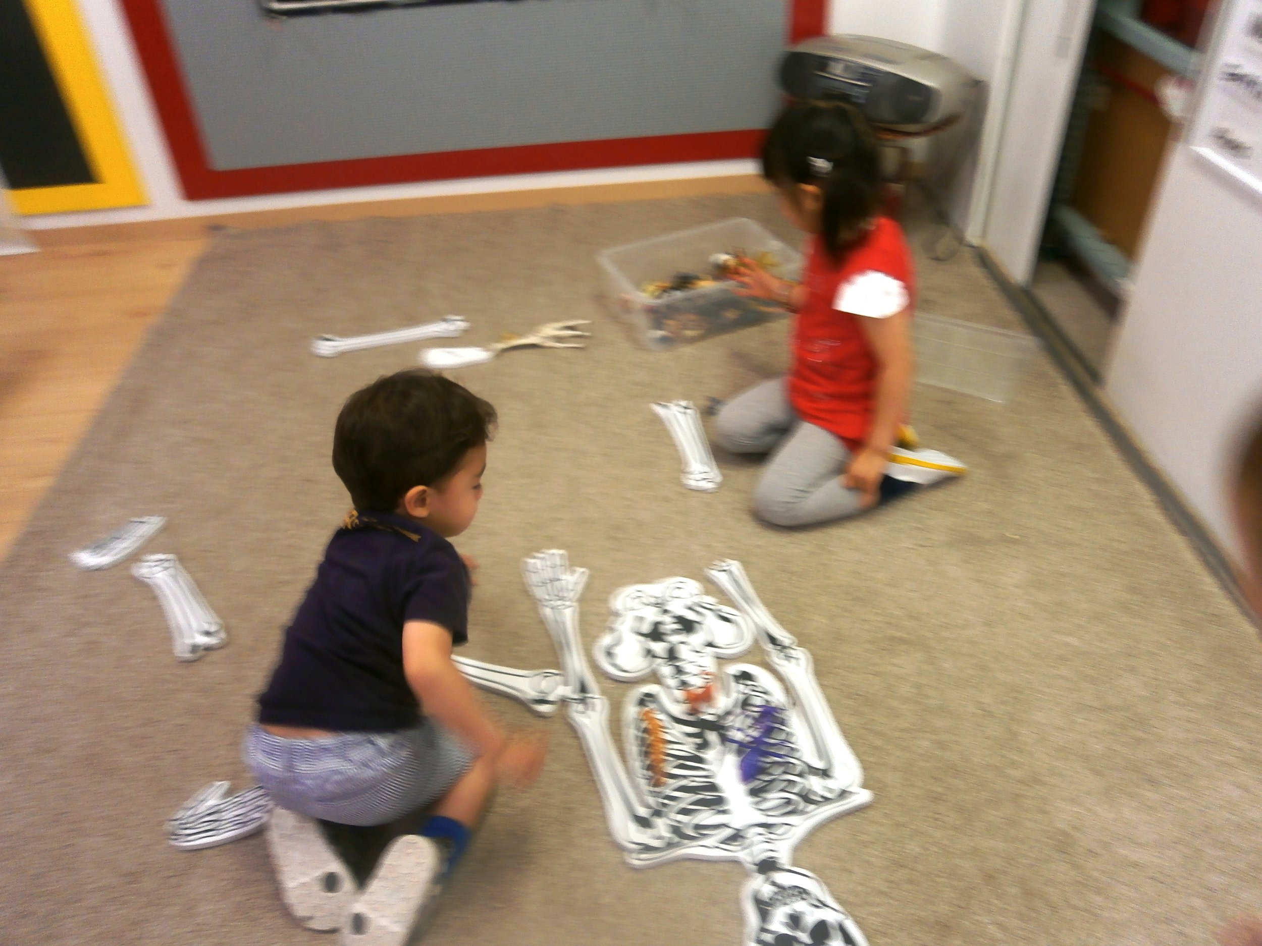 Here are some of our friends trying to finish our big skeleton puzzle.