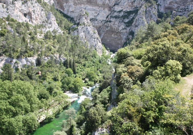 paysage de provence.jpg