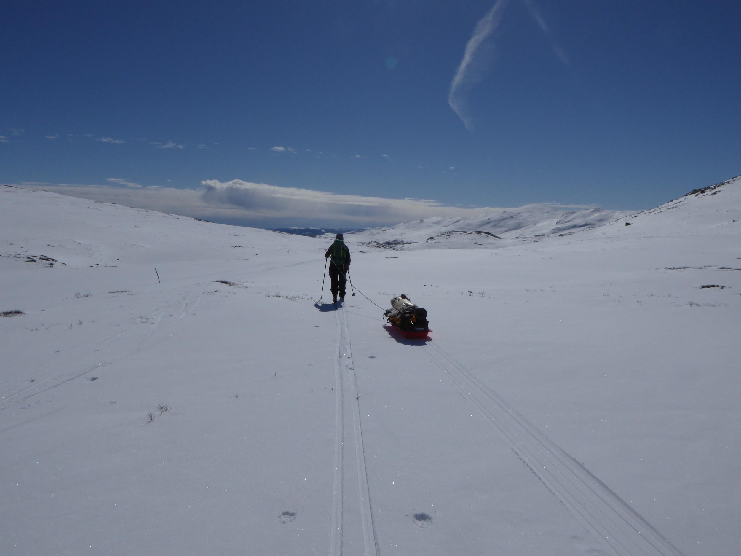 Ny dag, og vi sklir ut Hestådalen før vi vender mot Bingsbu