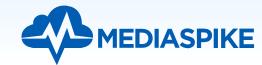 Mediaspike.png
