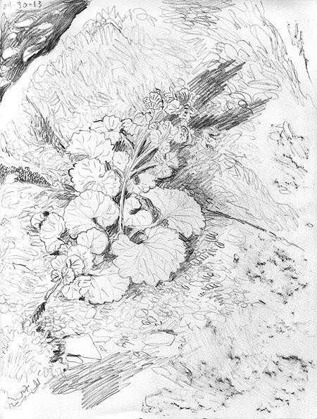 04-30-13-flower.jpg