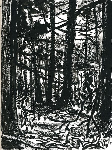 10-10-14-forest02.jpg