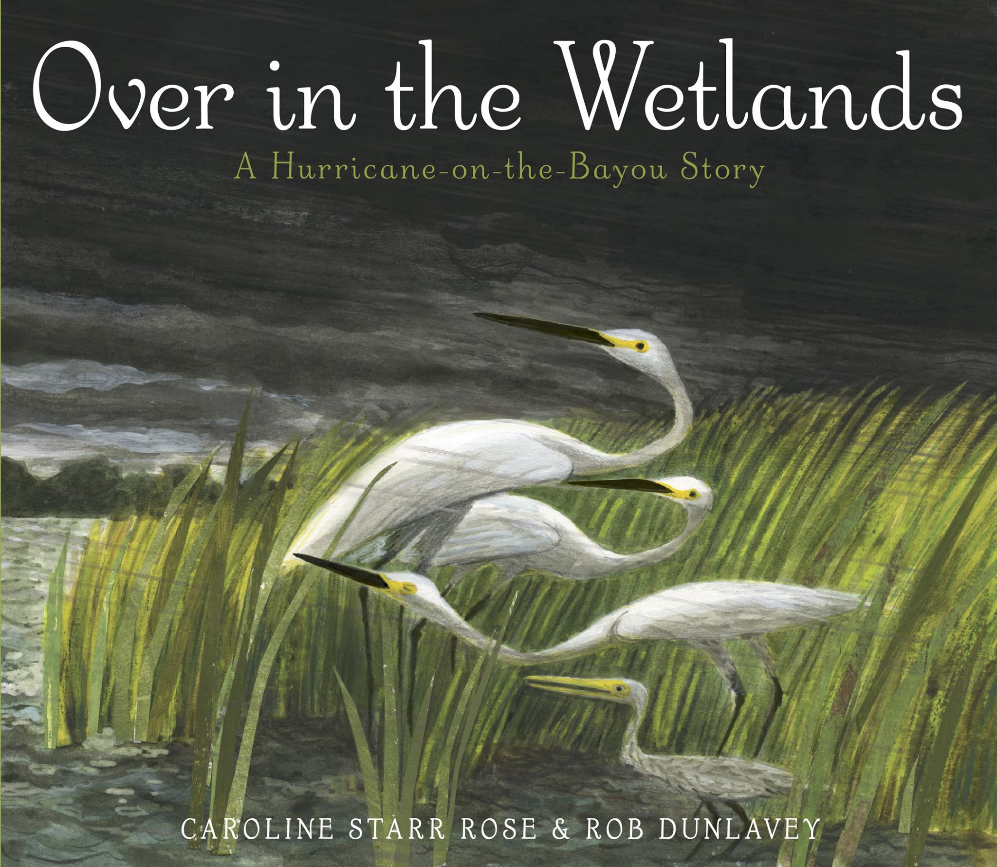 Over in the Wetlands cover