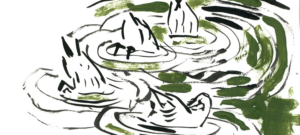09-20-14-ducks-cropped.jpg