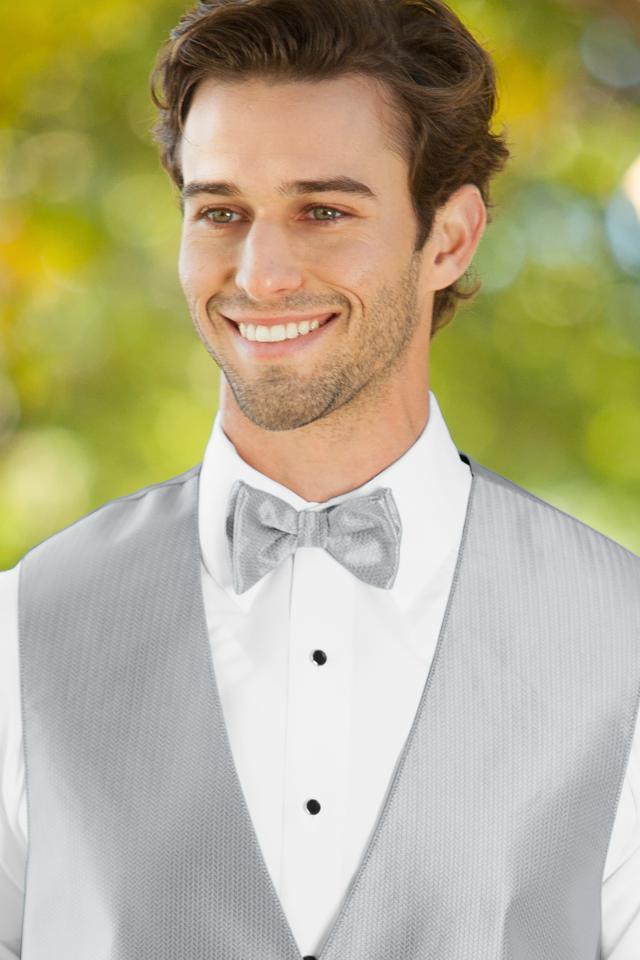 bow-tie-silver-BRSI.jpg