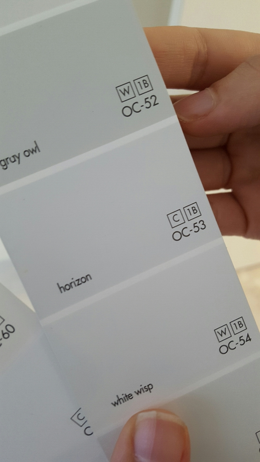 Accent wall color Horizon by Benjamin Moore gives the subtle pop of color to highlight my clients accolades.