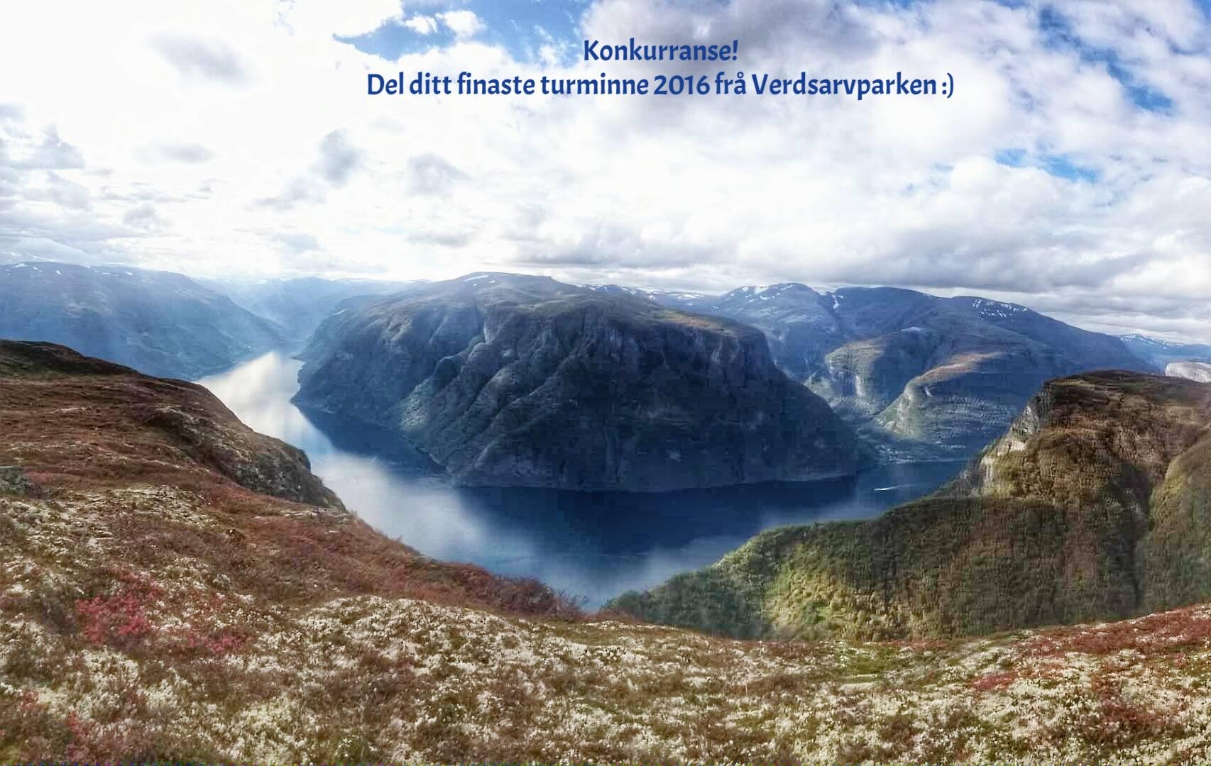 Utsikt frå Skulenosi (foto:Bengt Erlend Skjerdal)