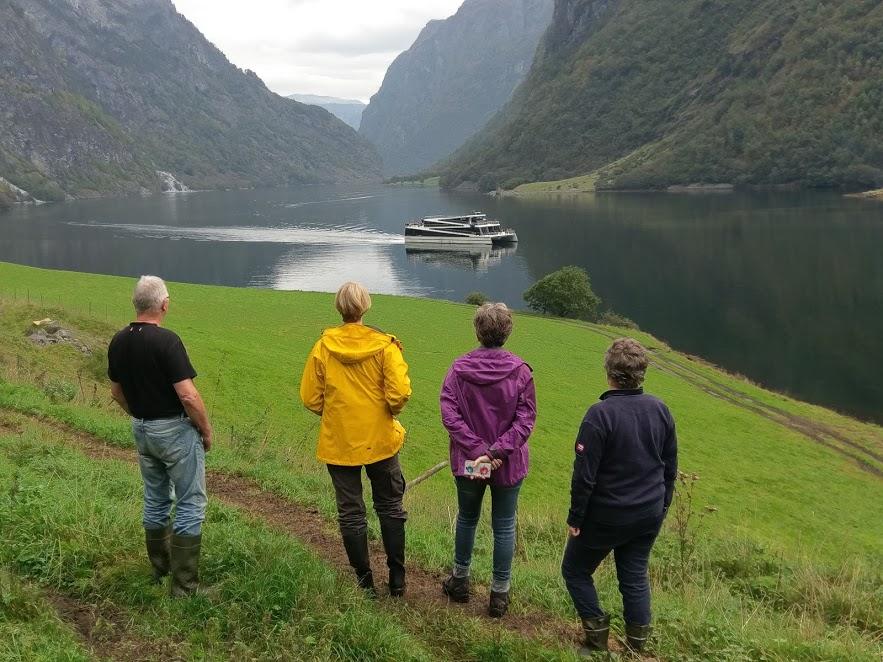 Bakka The Fjords.jpg