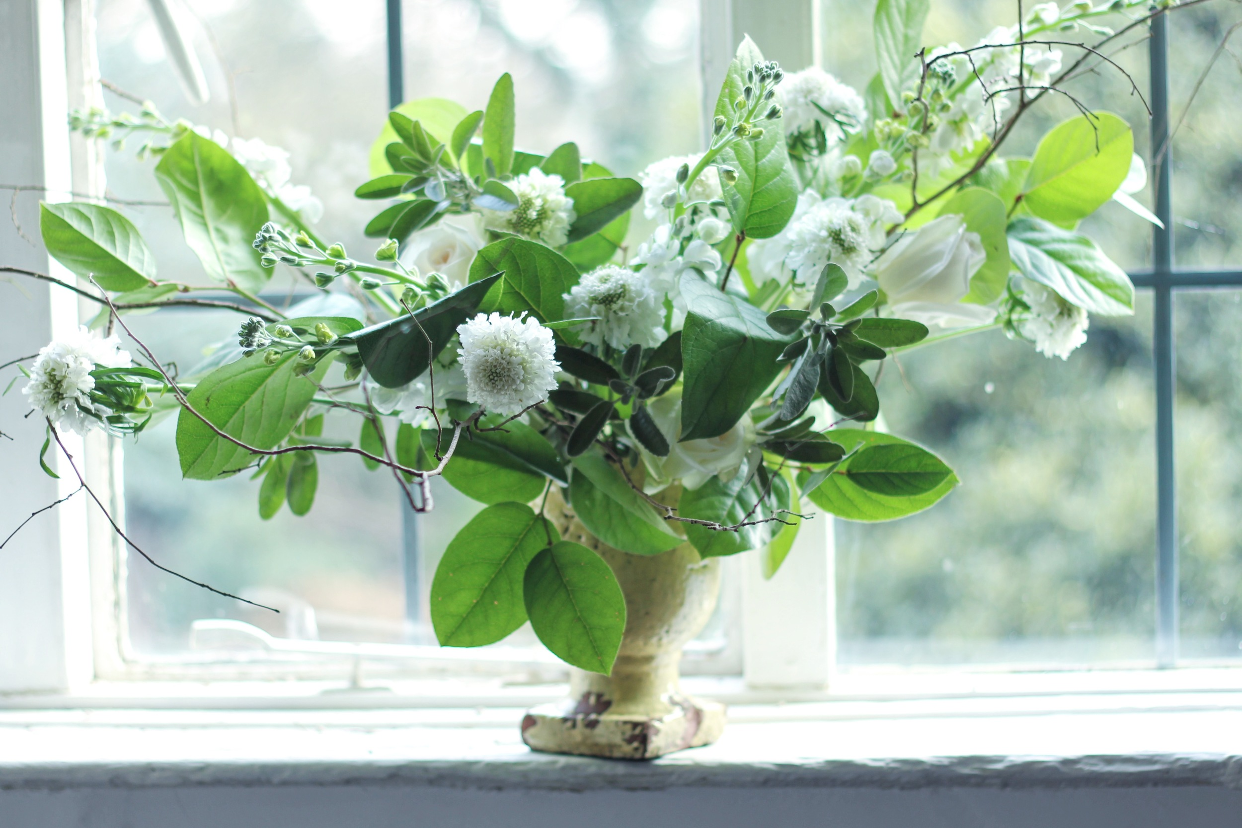 wild floral urn by Jennifer Pinder with white flowers including scabious, stock and blush pink roses