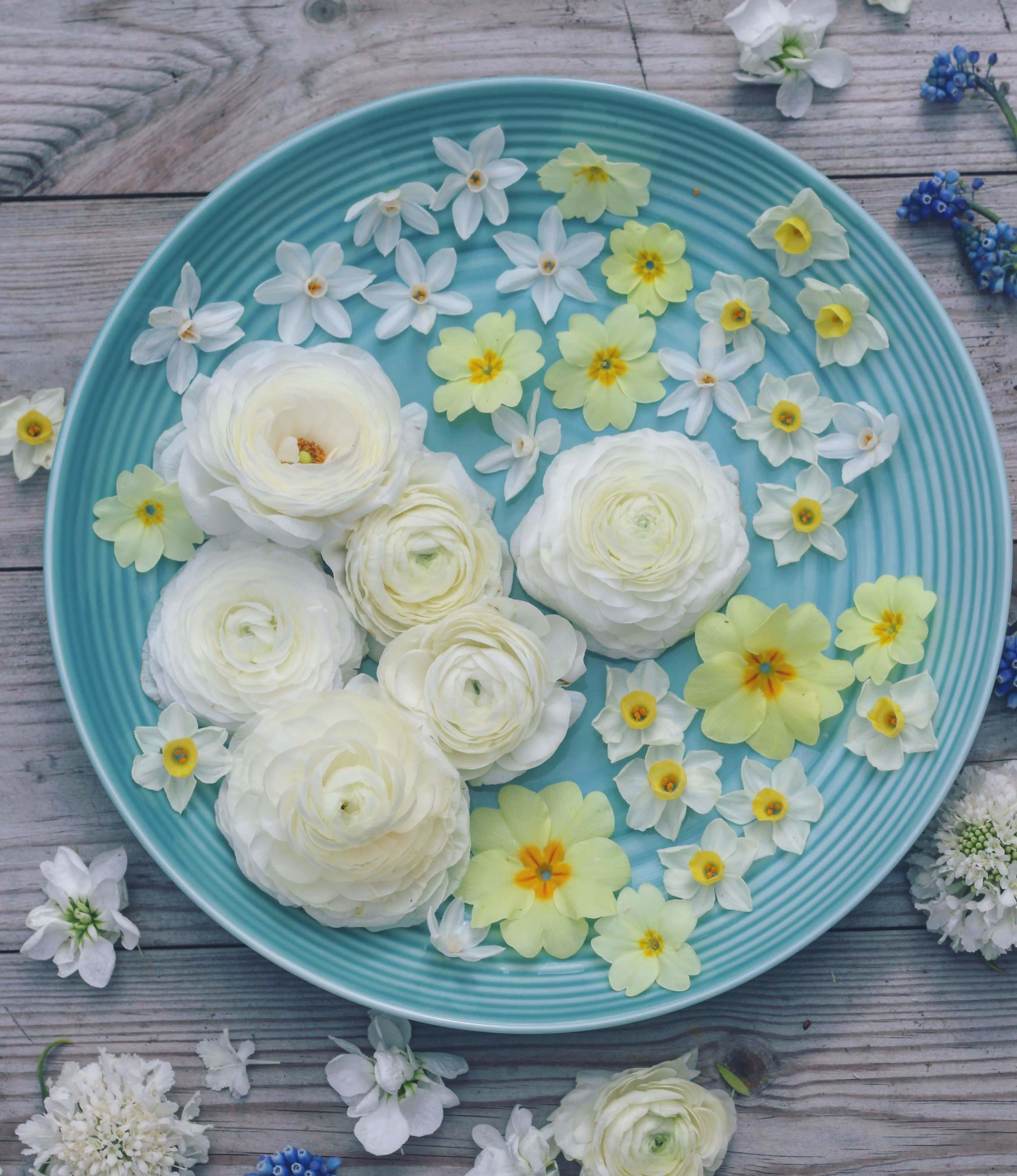 Easter Flatlay By Jennifer Pinder with Easter biscuits and delicate spring flowers. Inspiration for your Easter table setting and centerpieces with light and bright flowers in pink, blue, yellow and white. Biscuit recipe by the Biscuiteers.