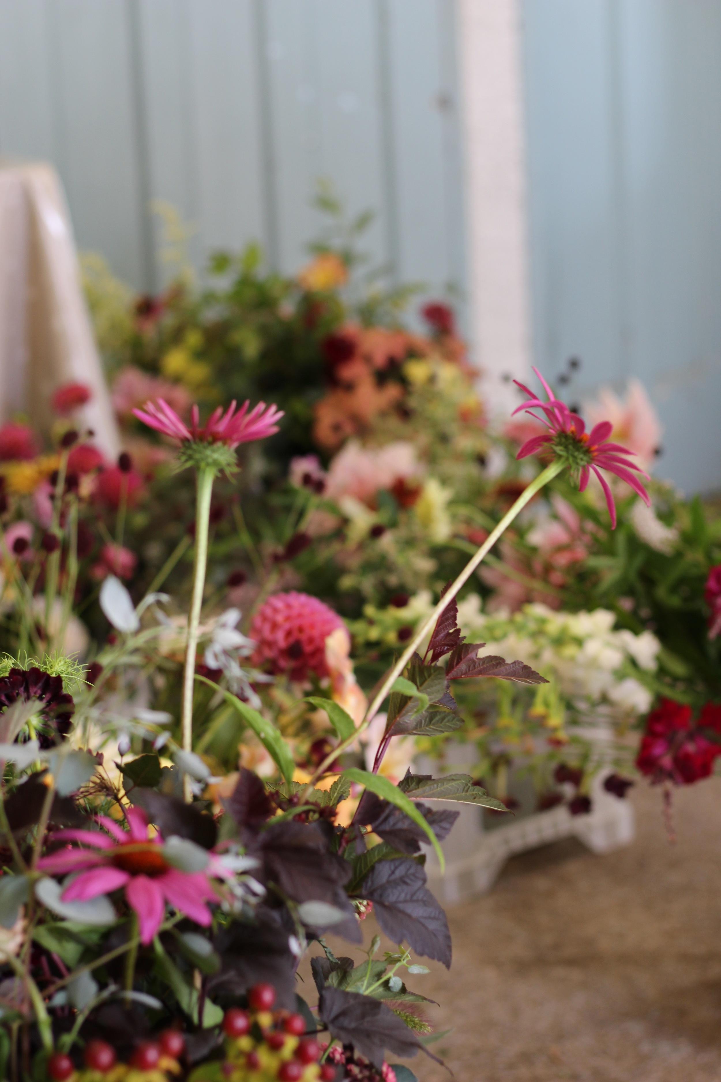 Kent florist Jennifer Pinder flowers for your wedding in Chiddingstone Penshurst Hever