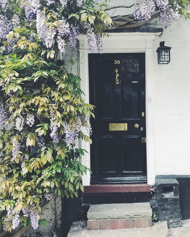 Fun day out with my best pal who has had the silliest haircut ... 'places I want to live' chapter 303: Rye xxx  #myfloraldays#wisteria#wysteriahysteria#petalsandprops#wildsfloral#pink#thatsdarling#fineartflowers#thesimpleeveryday #smallmomentsofcalm#interiors #inspiredbypetals#fineartflowers #littlestoriesofmylife#underthefloralspell #dsfloral#still_life_gallery #flower #flowerarch #lifestyle #autumn#london #stylist #fashion #꽃 #런던플라워 #플라워 #스타일링#weddingstyle #wedding#rye