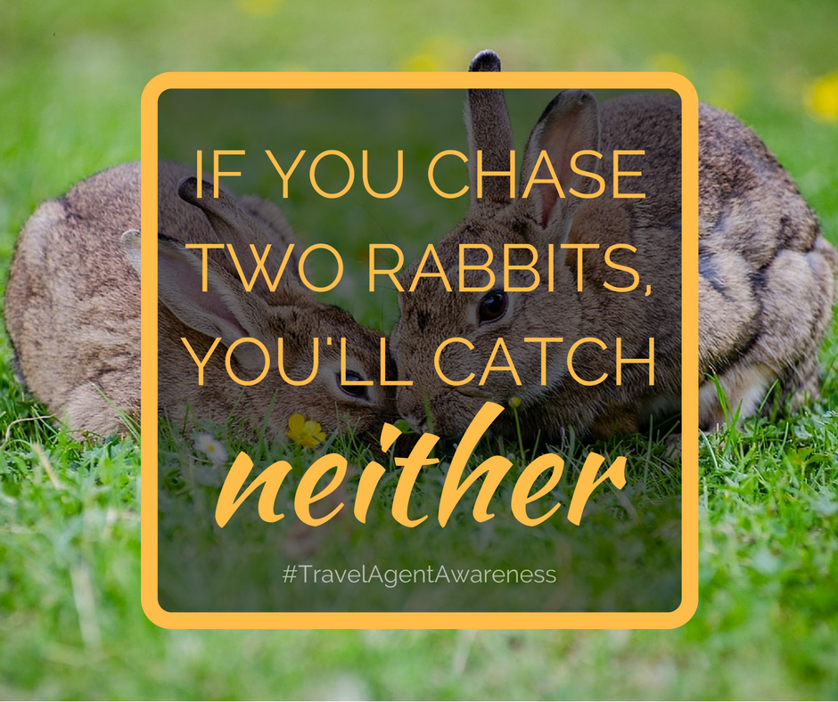 If you chase two rabbits, you'll catch neither - travel agent awareness