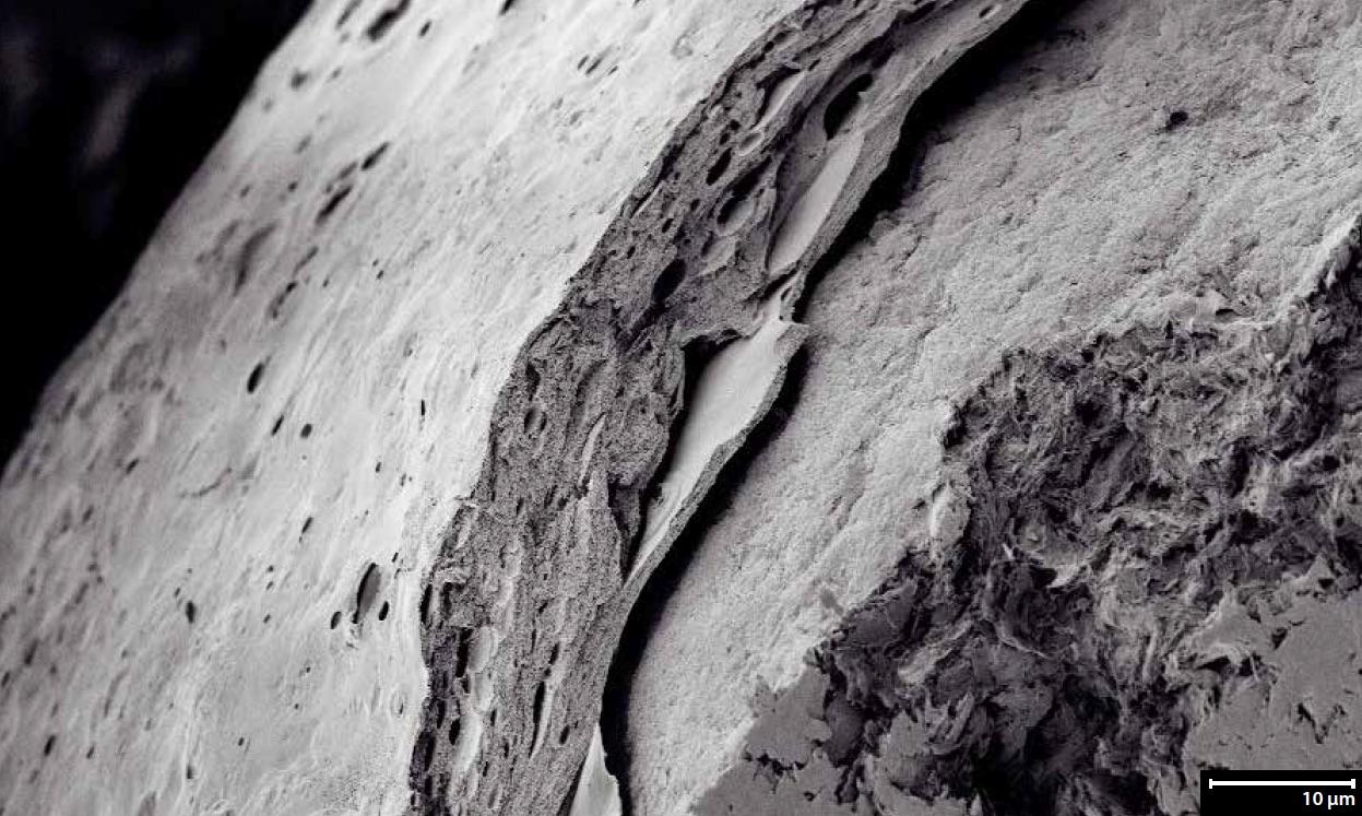 Enzymes sous forme de pellet - Enrobage par pulvérisation (photo Glatt)
