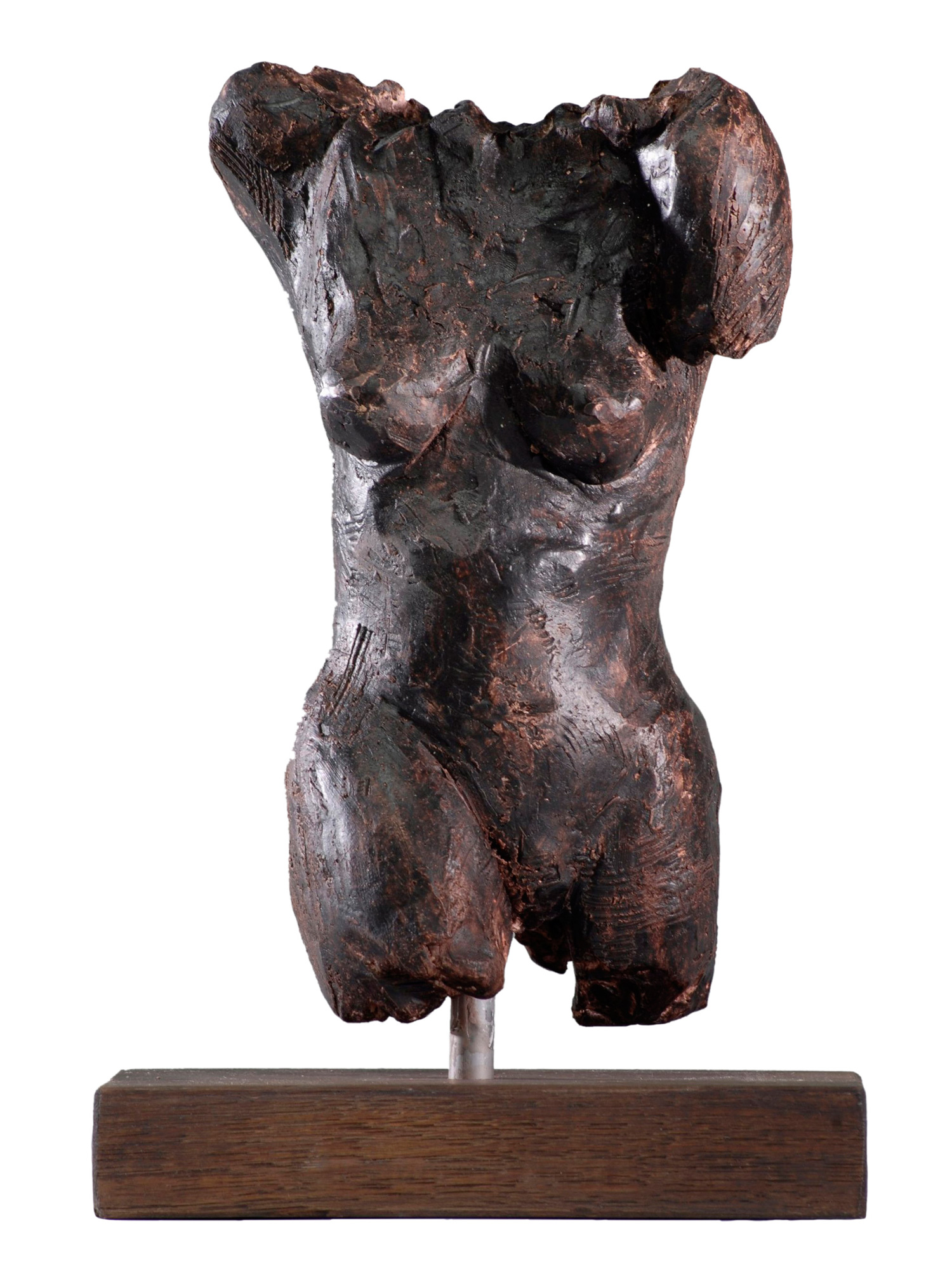 Female-Torso-IV.jpg