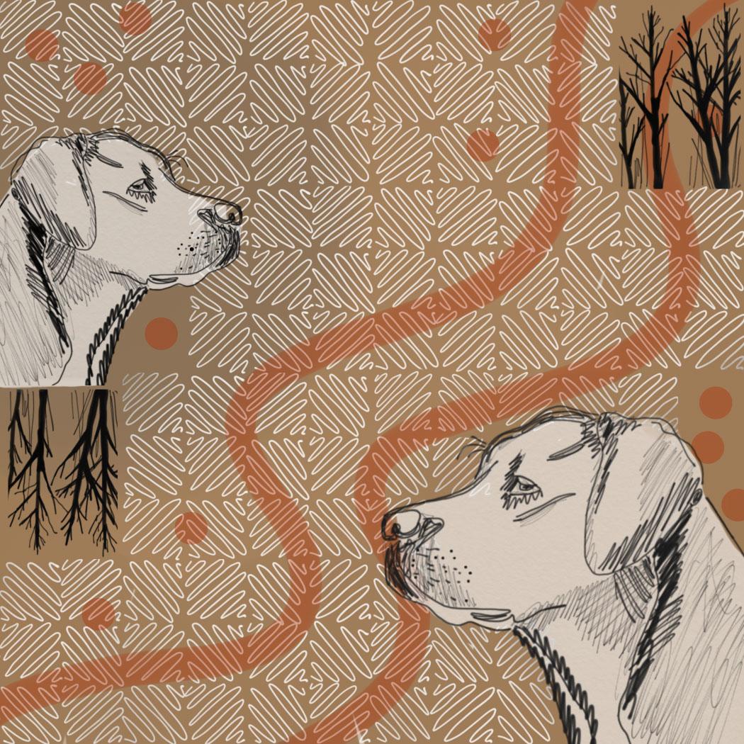 Illustration by Gisela Levy