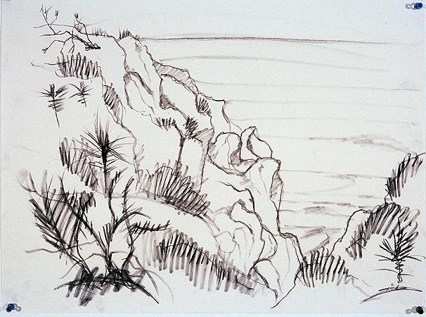 Torrey Pine Cliff,