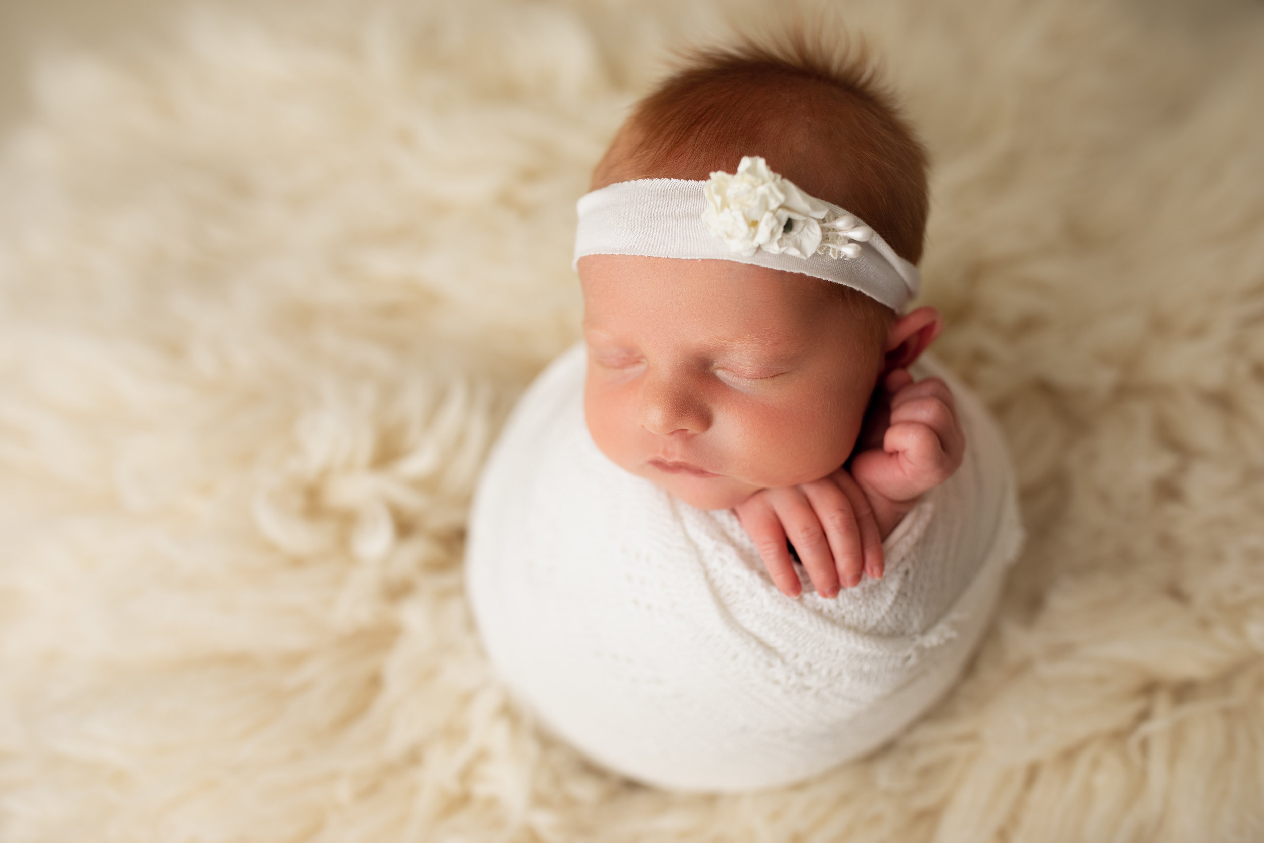 newborn baby during newborn photography session