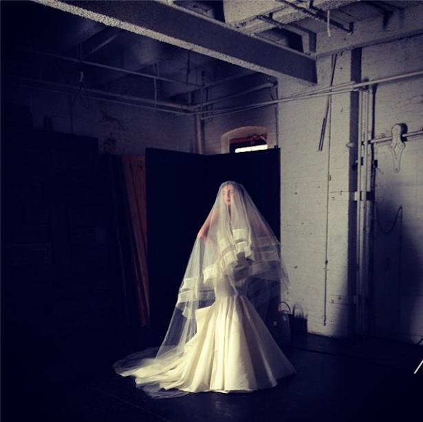 La Reine skirt  + 2 tiered Horsehair veil