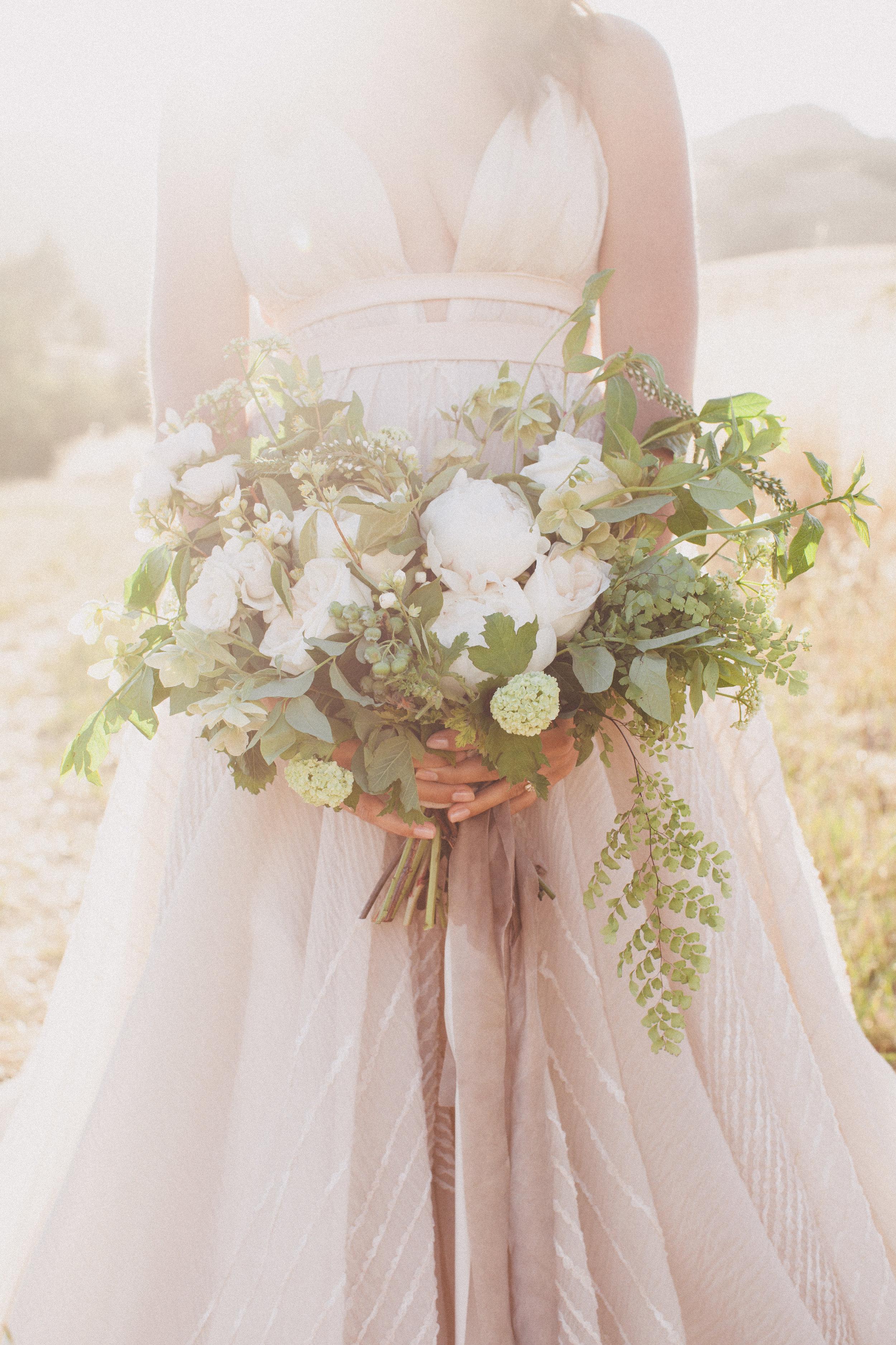 Carol Hannah Bridal Coralia Gown AW6396.jpg