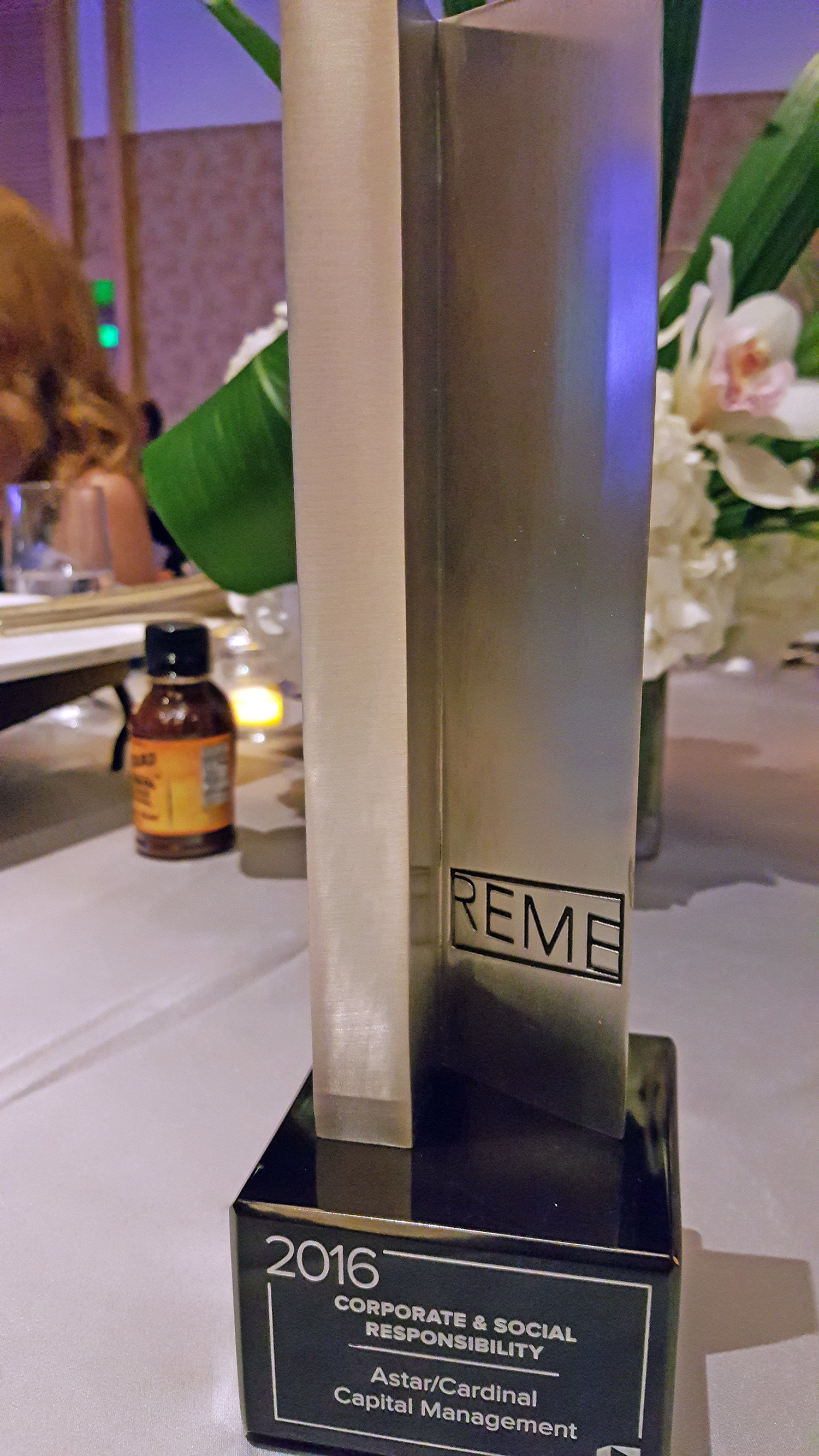 2016 REME Corporate and Social Responsibility Award