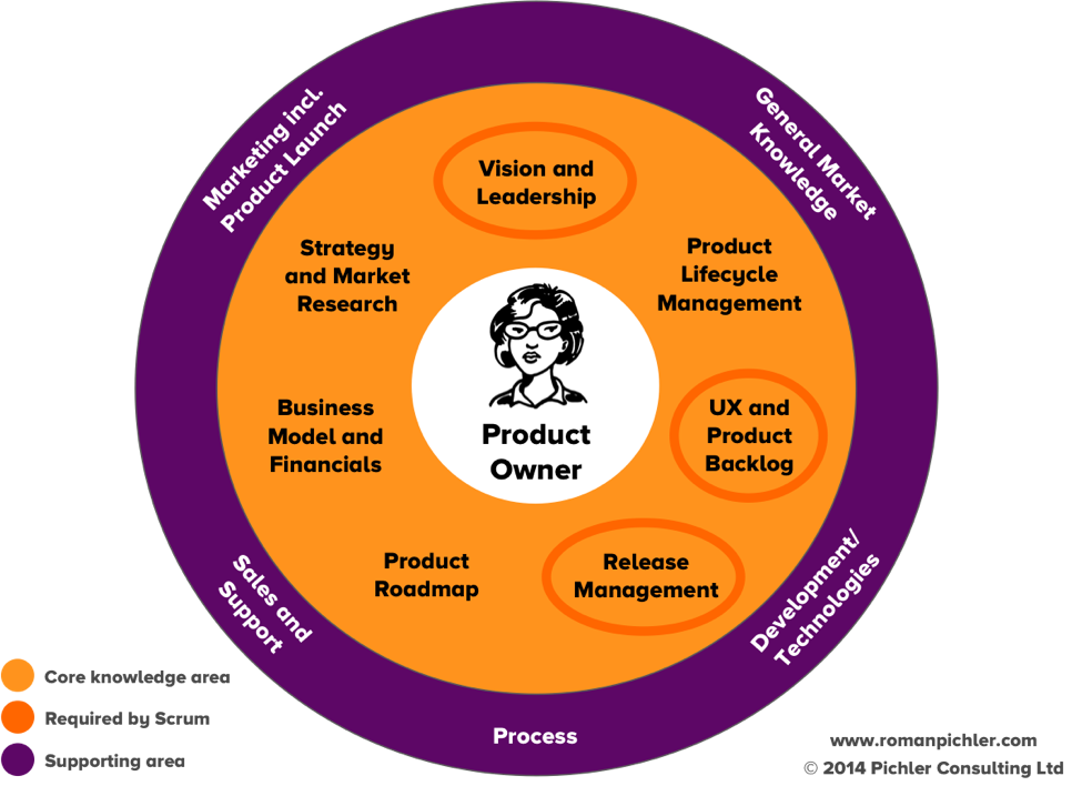 The role of the product owner in an agile team. Graphic courtesy of  Roman Pichler