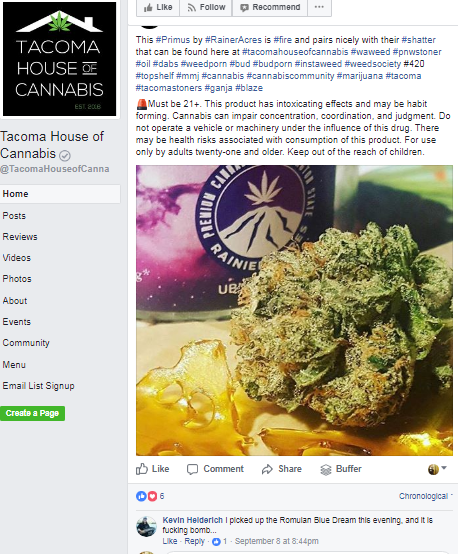 Tacoma Business Writer || Tacoma Dispensary Marketing || Cannabis Marketing