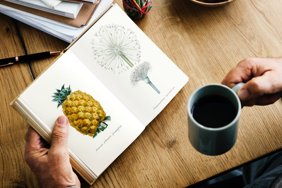 Looks like drinking coffee while smoking weed can result in you reading a botanical book with a full-color drawing of a pineapple.