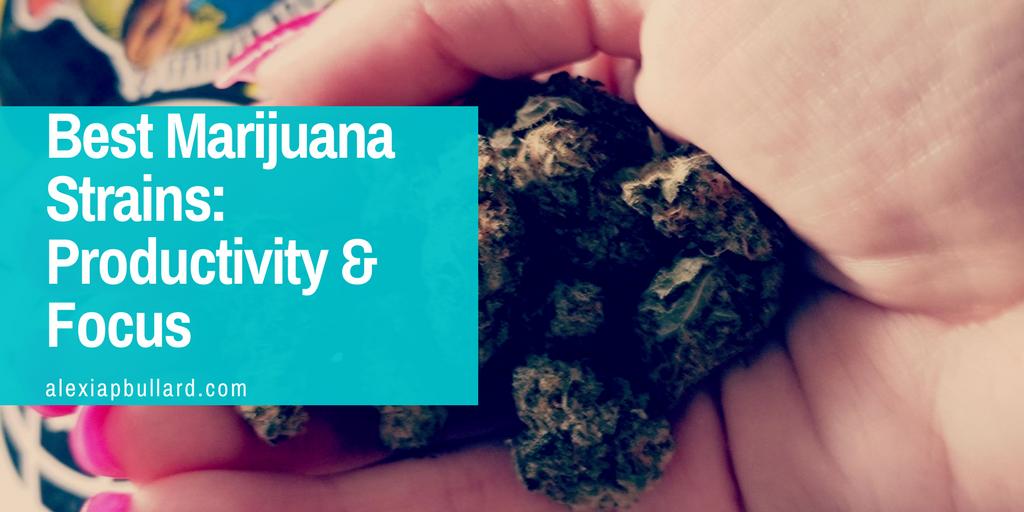 best marijuana strains for productivity