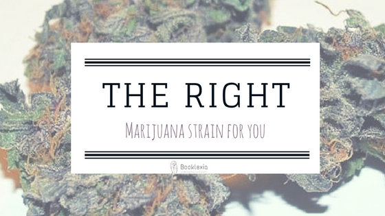 Find out how to pick the right marijuana strain for you and the experience you're looking for. ||Booklexia Content Marketing