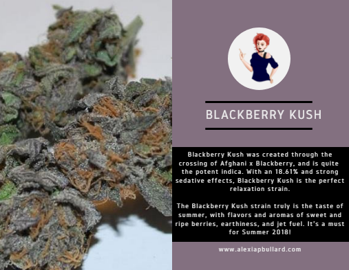 Blackberry Kush is the epitome of a summer cannabis strain, with flavors and aromas of ripe blackberries and sweet earth. Chill out, some of this 18.61% Blackberry Kush, and relax in the summer sun.