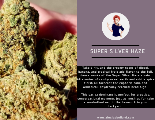 It's hard to find a strain that tastes more like summer than Super Silver Haze by Equinox. You've got tropical flavors, sweet and spicy flavors, and even some candy flavors in there. If this doesn't remind you of the Ice Cream Man, well...Smoke some more.