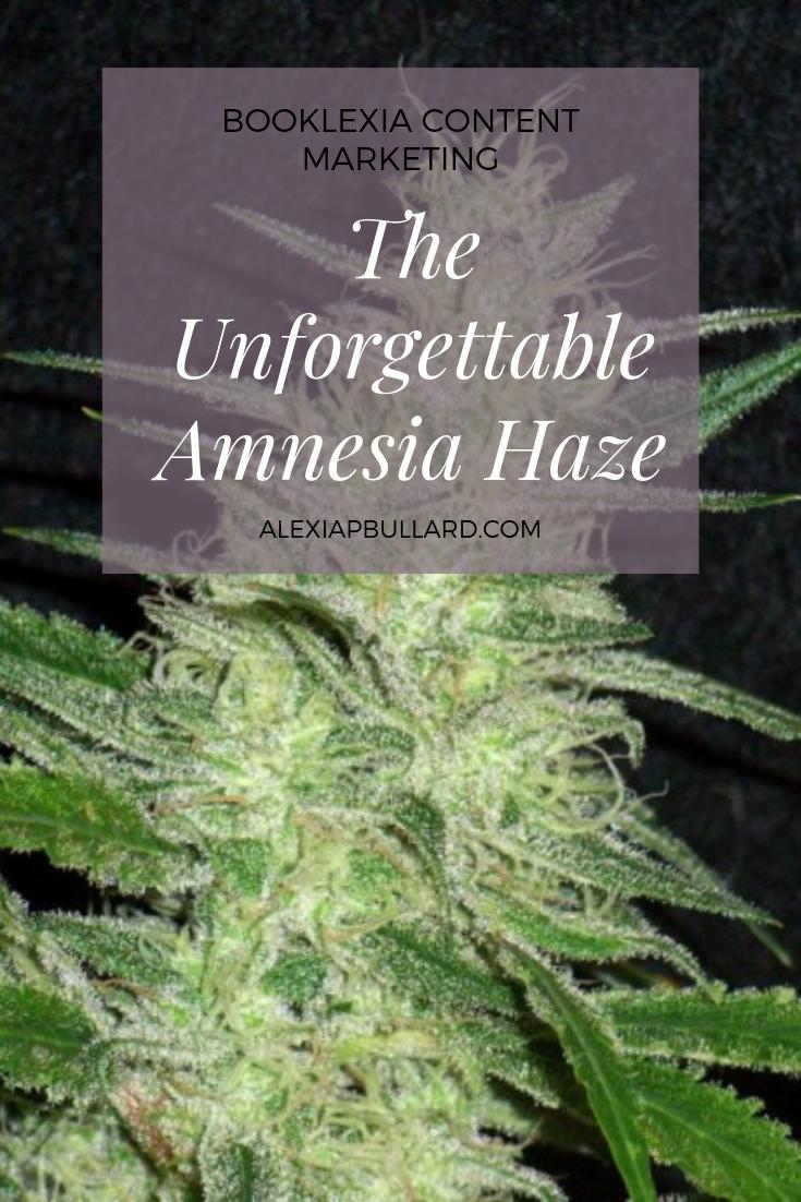 Amnesia Haze strain review — Booklexia Content Marketing, san diego cannabis marketing, cannabis content marketing