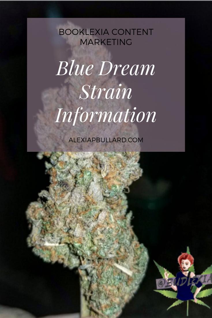 Blue Dream Strain Information | Booklexia Content Marketing, dispensary marketing, cannabis marketing  Follow on Instagram: @budlexia , @booklexia