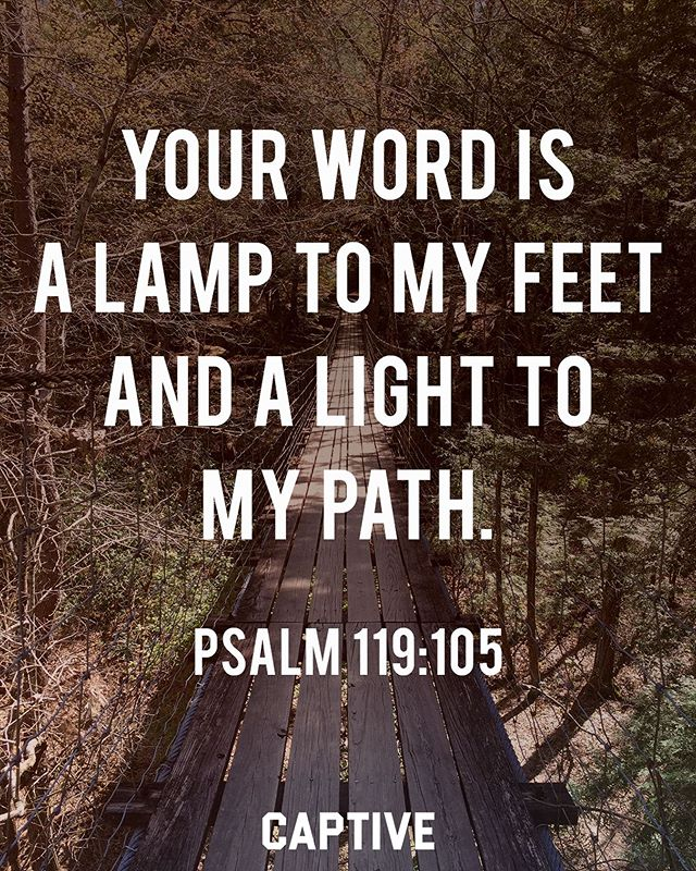 "What are you studying right now? • ""Your word is a lamp to my feet and a light to my path."" ‭‭Psalms‬ ‭119:105‬ • • What a privilege it is to have access to the Word of God! The God-breathed scripture that lights our way so we may walk in light rather than darkness. We must be in the word, for how can we see with the light? ▪️ Through the Bible, we find hope for the life to come. We find encouragement and reason for the trials and troubles of this world. We are led to the source of salvation and life. The Word of God is vital to the Christian! May we all be in the Word more. • • Follow @imcaptive for more."