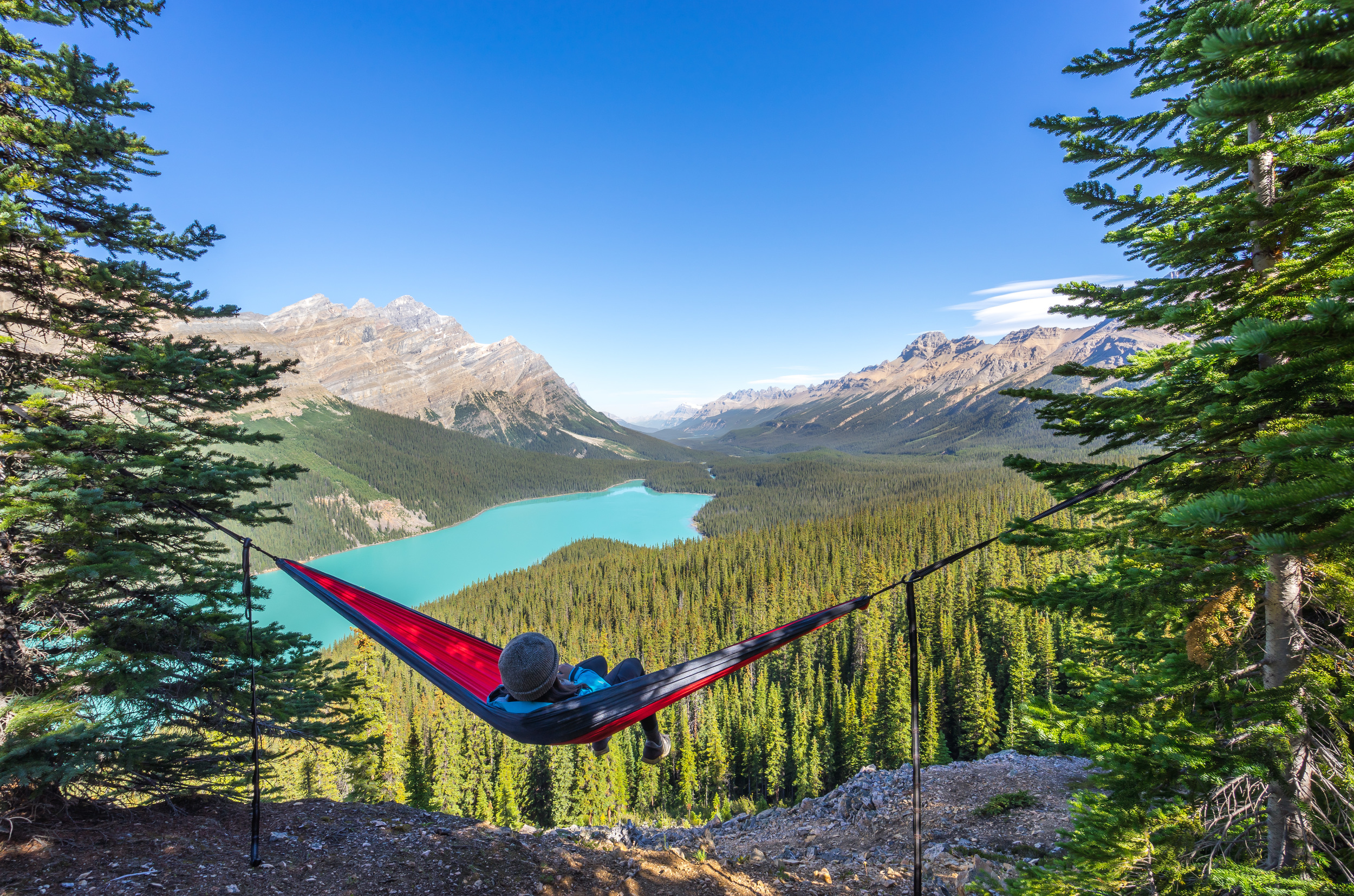7. Find the perfect spot to hang out overlooking Peyto Lake: Could there be a more perfect spot to hammock? I don't think so.