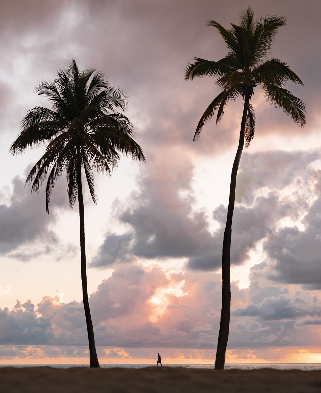 Fort Lauderdale2.jpg