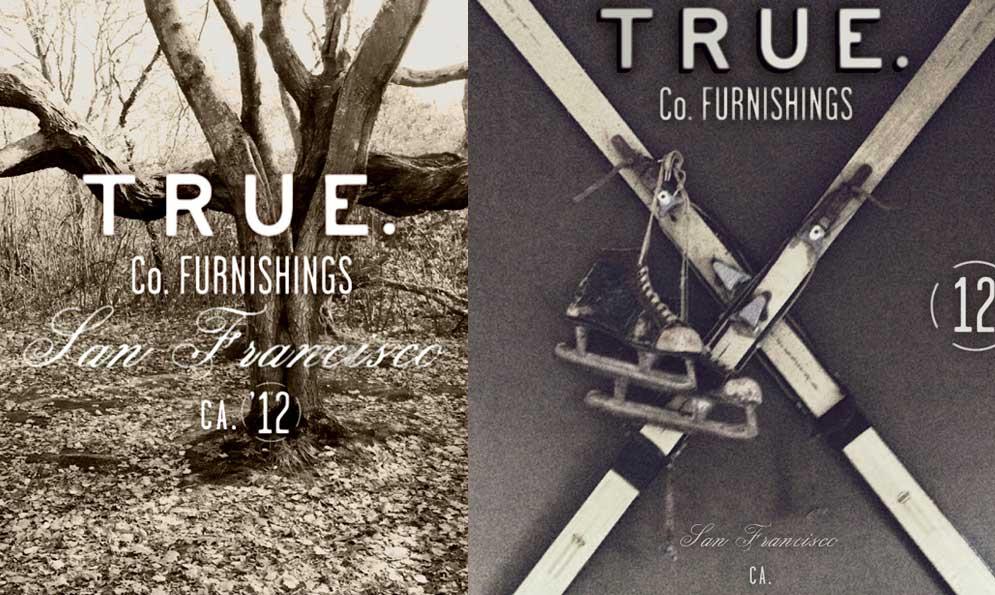 True Co. Branding