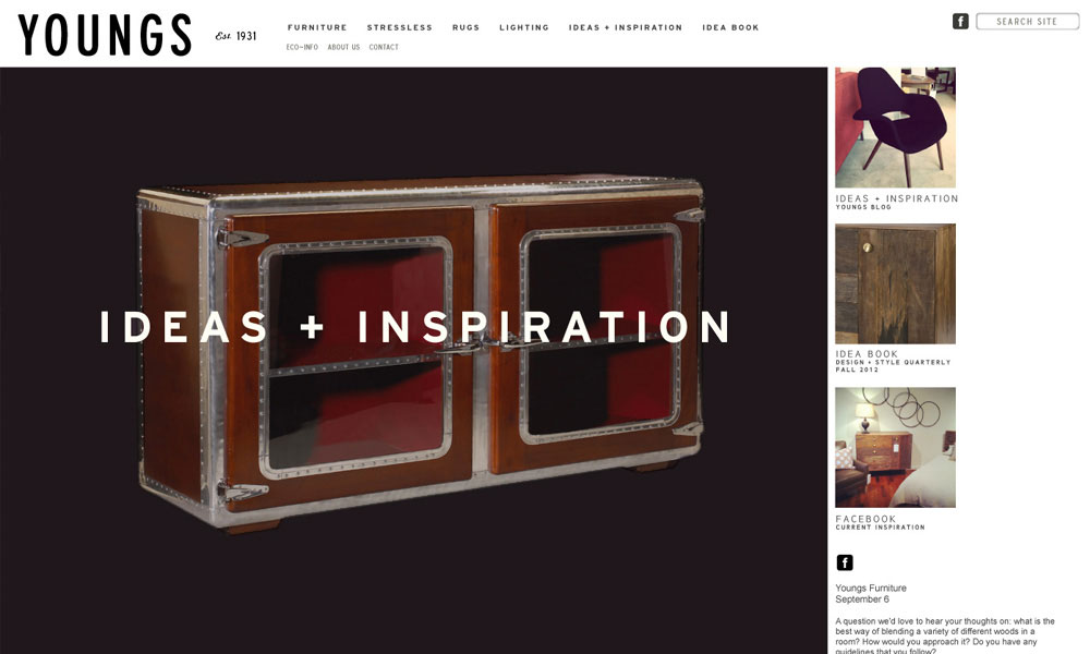 Youngs Furniture Branding and Website Design