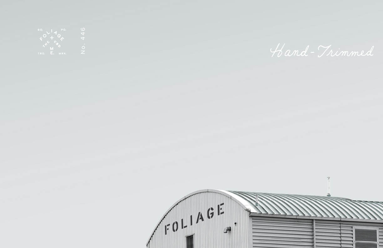 Foliage_Brand_ID_Dev_Deck_2019_v144.jpg