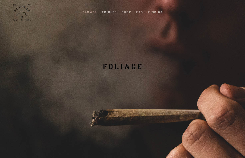 Foliage_Brand_ID_Dev_Deck_2019_v145.jpg