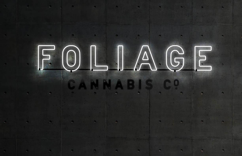 Foliage_Brand_ID_Dev_Deck_2019_v125.jpg