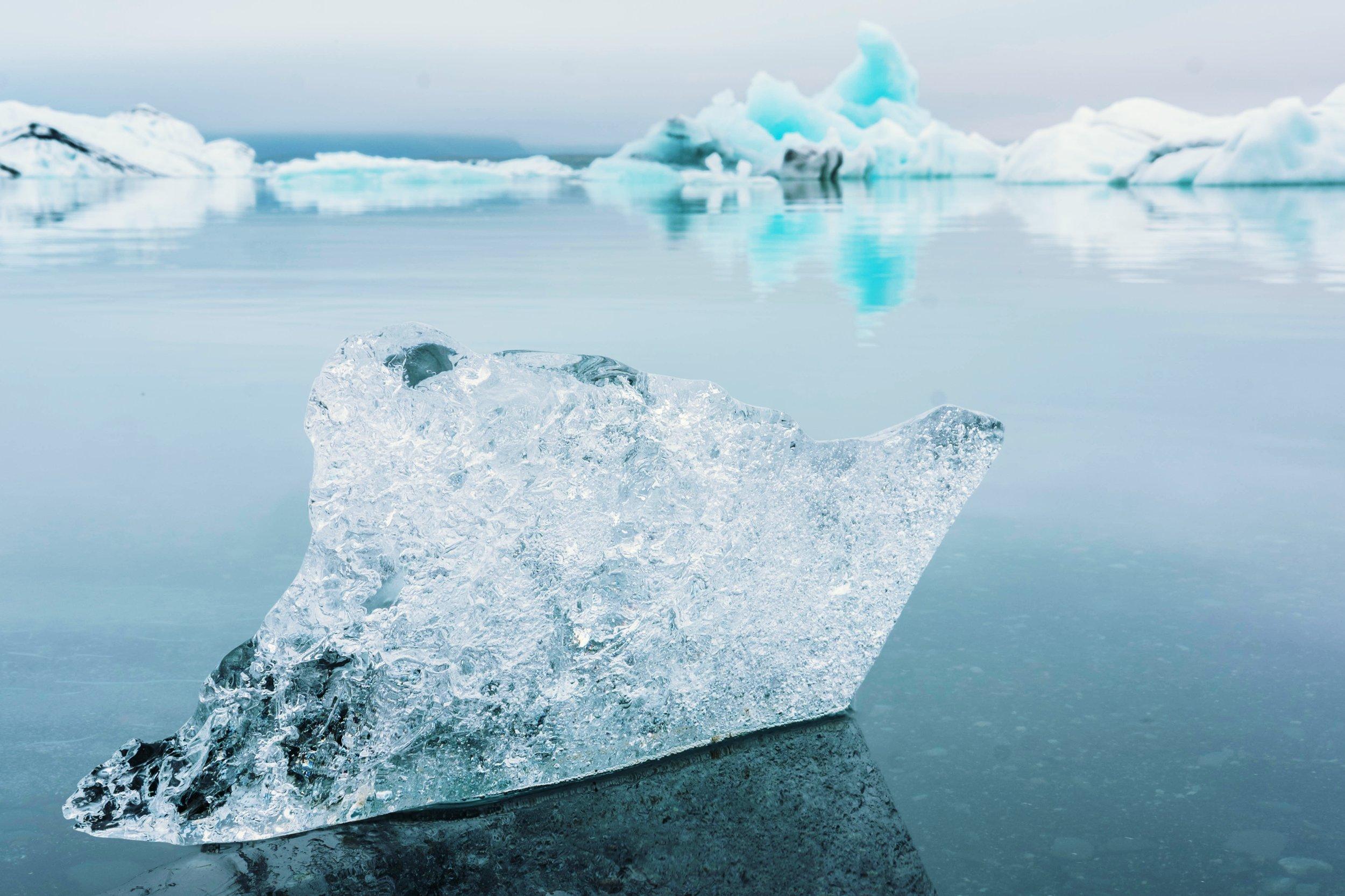 icy slience blog.jpg