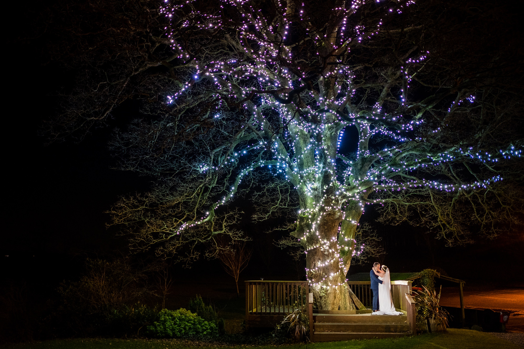 bride and groom by large lit tree