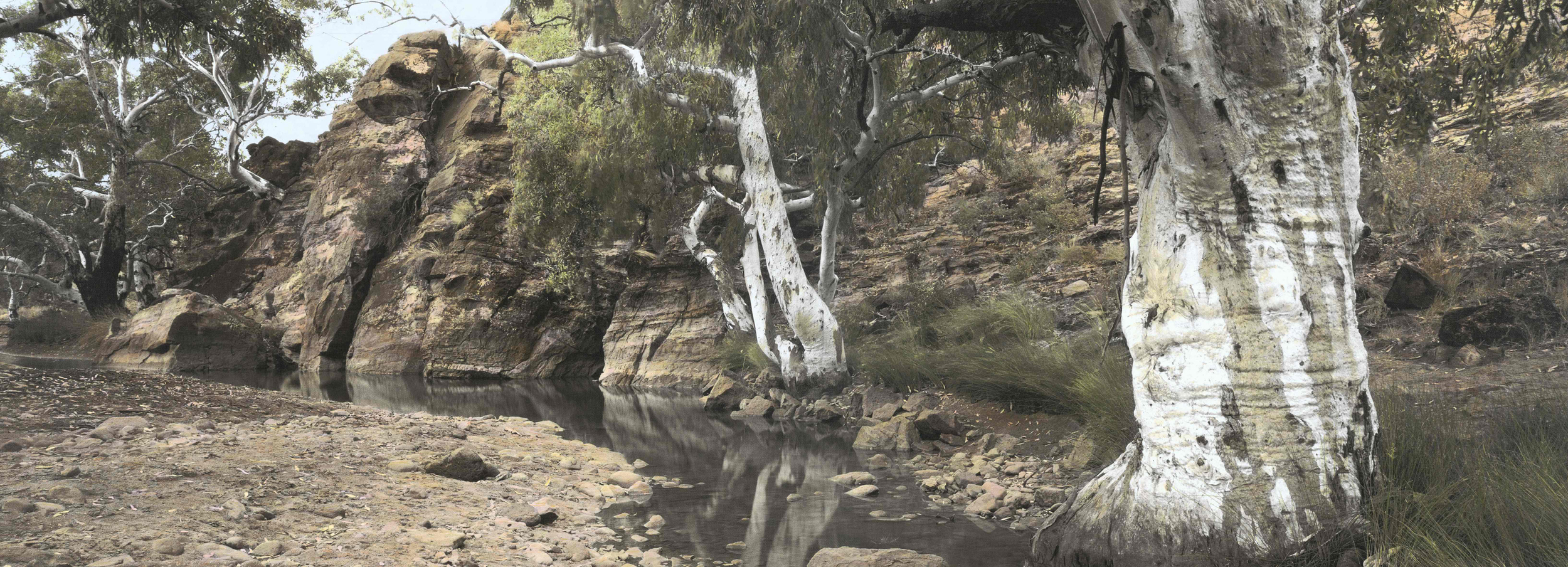 "Fossil waterhole (having-been-there Series)  2014, Adelaide A/P Archival inkjet print on canvas, hand colored with synthetic polymer paint and pencil 26"" x 69"" (65 x 175 cm)   SOLD"