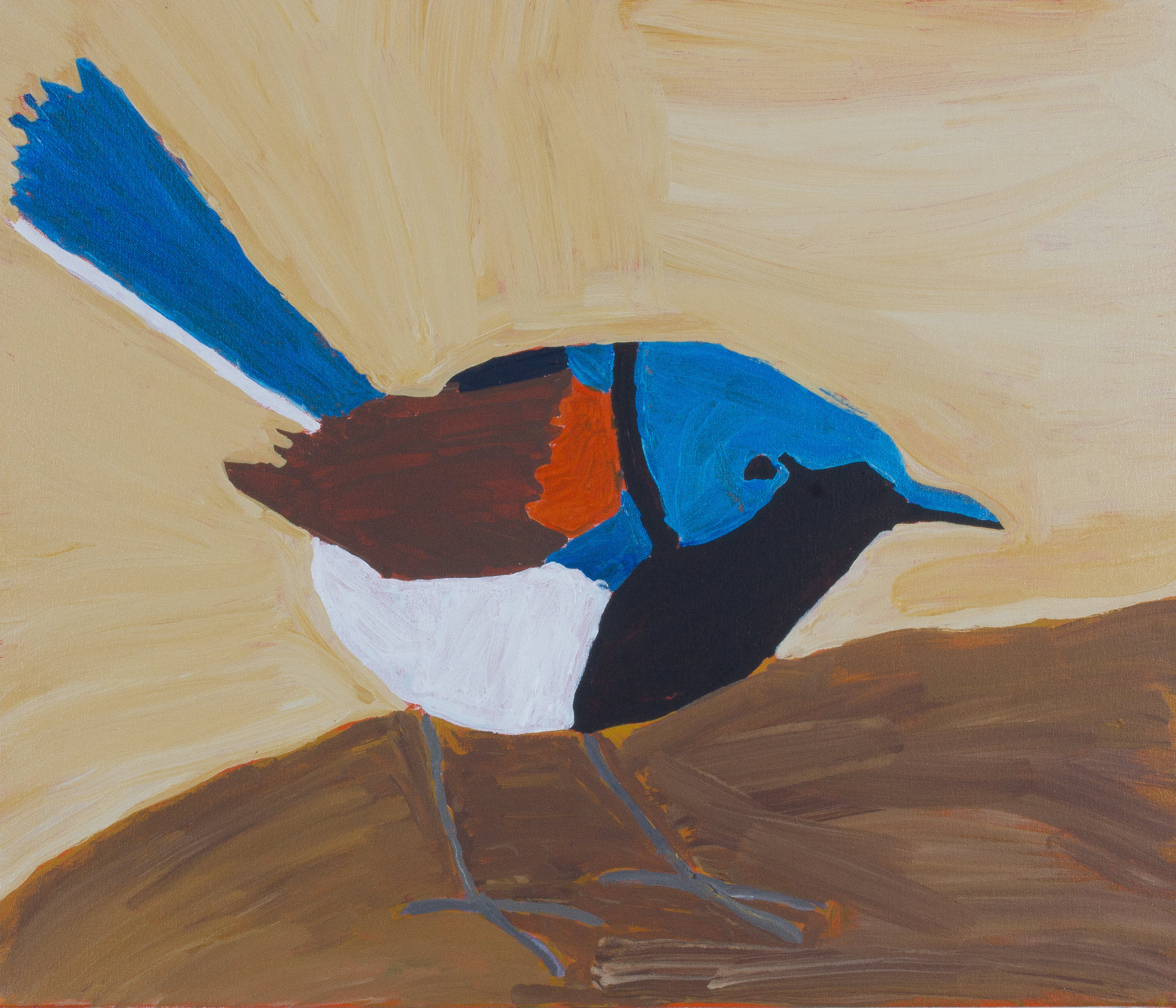 "Nyangulya Katie Nalgood  Fairy Wren  28 x 24"" (71 x 61 cm) acrylic on linen Spinifex Hills Artists Catalog #18-488  SOLD"