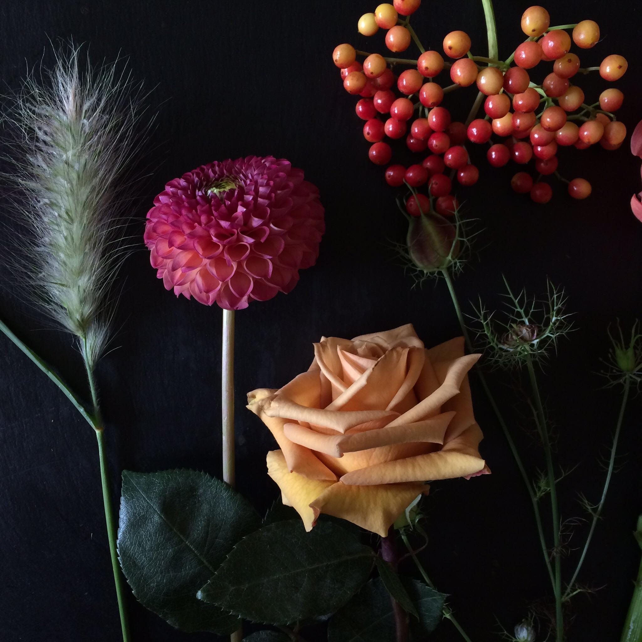 Autumn flowers of viburnum berries, mustard coloured roses, grasses, nigella seed pods and dahlias