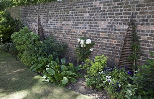 Garden Borders Planted